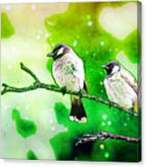 White-eared Bulbul - Watercolor Canvas Print