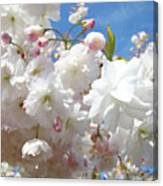 White Floral Tree Flower Blossoms Art Baslee Troutman Canvas Print