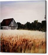 White For Harvest Canvas Print
