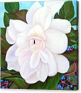 White Gardenia With Virginia Creepers Canvas Print