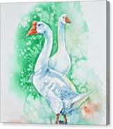 White Geese Canvas Print
