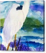 White Heron Canvas Print