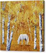 White Horse In Golden Woods Canvas Print