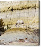 White Horse On A Mound Canvas Print