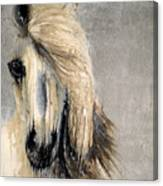 White Horse On Silver Leaf Canvas Print