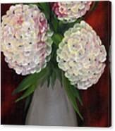 White Hydrangeas Canvas Print