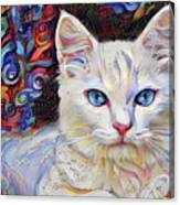 White Kitten With Blue Eyes Canvas Print