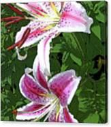 White Lillies 2 Canvas Print