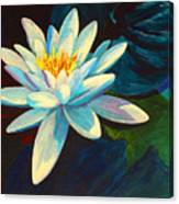 White Lily IIi Canvas Print