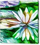 White Lotus In The Pond Canvas Print