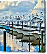 White Marlin Open Canvas Print