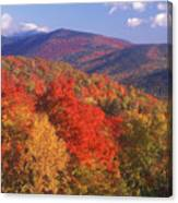 White Mountain Foliage Bear Notch Canvas Print