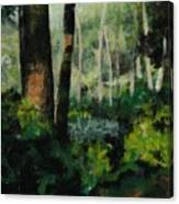 White Mountain Woods Canvas Print