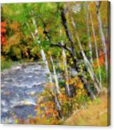 White Mountains Brook Canvas Print