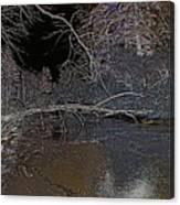 White Night  Canvas Print