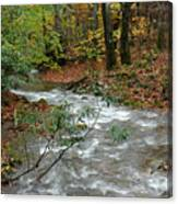 White Oak Run Autumn Canvas Print