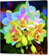 White Orchids Pastel Canvas Print