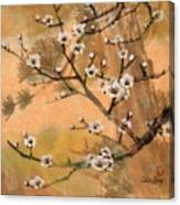 White Plum Blossoms With Pine Tree Canvas Print