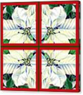 White Poinsettia Quartet Canvas Print
