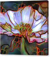 White Poppy Flower Canvas Print