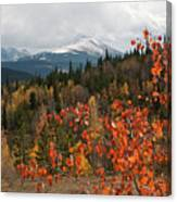 White River National Forest Autumn Panorama Canvas Print