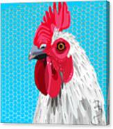White Rooster With Blue Background Canvas Print