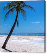 White Sand Beaches And Tropical Blue Skies Canvas Print