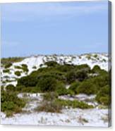 White Sand Dunes And Blue Skies Canvas Print