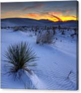 White Sands Sunset Canvas Print