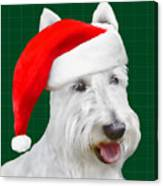 White Scottish Terrier Christmas Plaid Canvas Print
