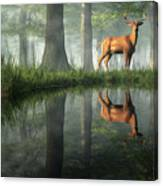 White Tailed Deer Reflected Canvas Print