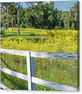 White Wood Fence And Wildflowers Canvas Print