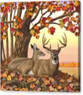 Whitetail Deer - Hilltop Retreat Canvas Print