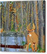 Whitetail Deer In Swamp Canvas Print