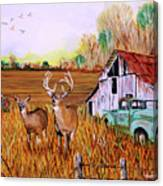 Whitetail Deer With Truck And Barn Canvas Print