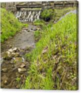 Whitewater Bridge And Dam Scene 13 Canvas Print