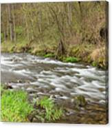 Whitewater River Spring 44 Canvas Print