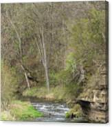 Whitewater River Spring 45 B Canvas Print