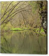 Whitewater River Spring 51 Canvas Print