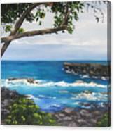 Whittington Beach Park Big Island Hawaii Canvas Print