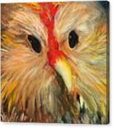 Whizzer Canvas Print