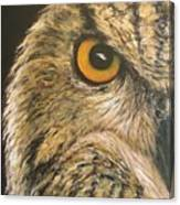 Whooo Goes There Canvas Print