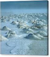 Whooper Swans In Snow Canvas Print