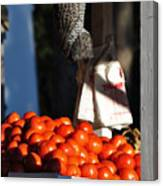 Who's Tomatoes Canvas Print