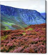 Wicklow Heather Carpet Canvas Print