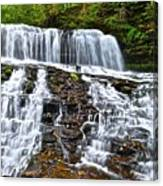 Wide Flowing Falls Canvas Print
