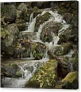 Wigwam Falls Blue Ridge Parkway Canvas Print