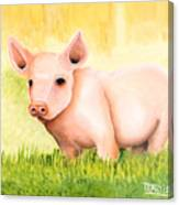 Wilber Canvas Print