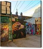 Wild Alley Canvas Print