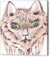 Wild- Brown Hair Cat Canvas Print